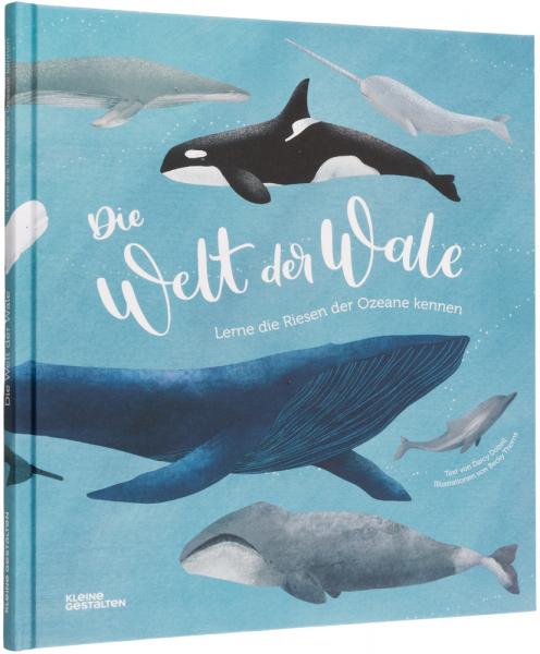 Kinderbuch Die Welt der Wale