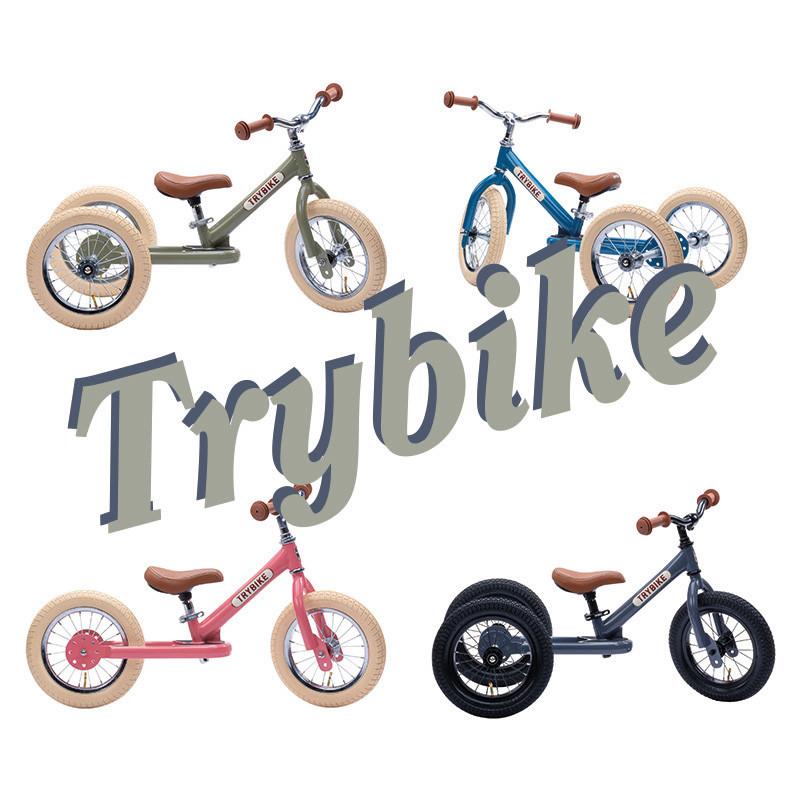 media/image/Trybike21_2.jpg
