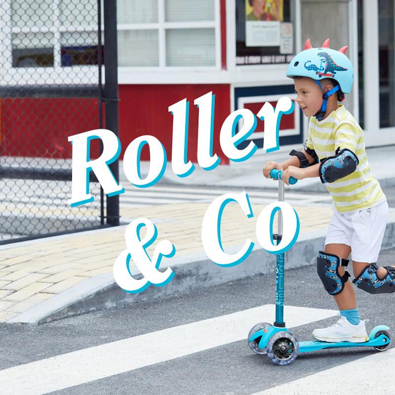 media/image/Roller21.jpg